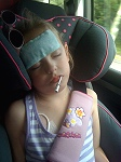 Daisy asleep in car - Hickman line showing